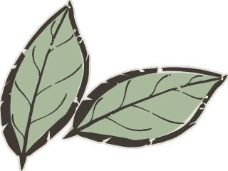 feuilles-equus-tao