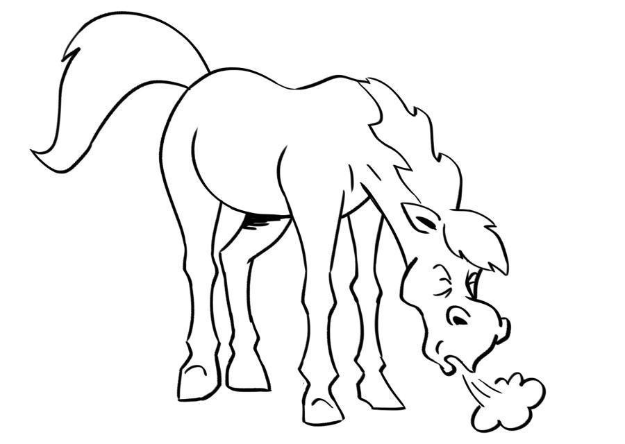 Toux - Emphysème equin